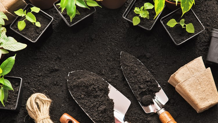 lead generation and nurturing